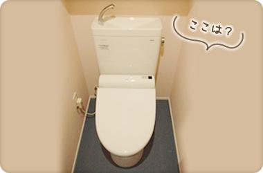 大人用のトイレ!ピンクの壁紙でかわいいです